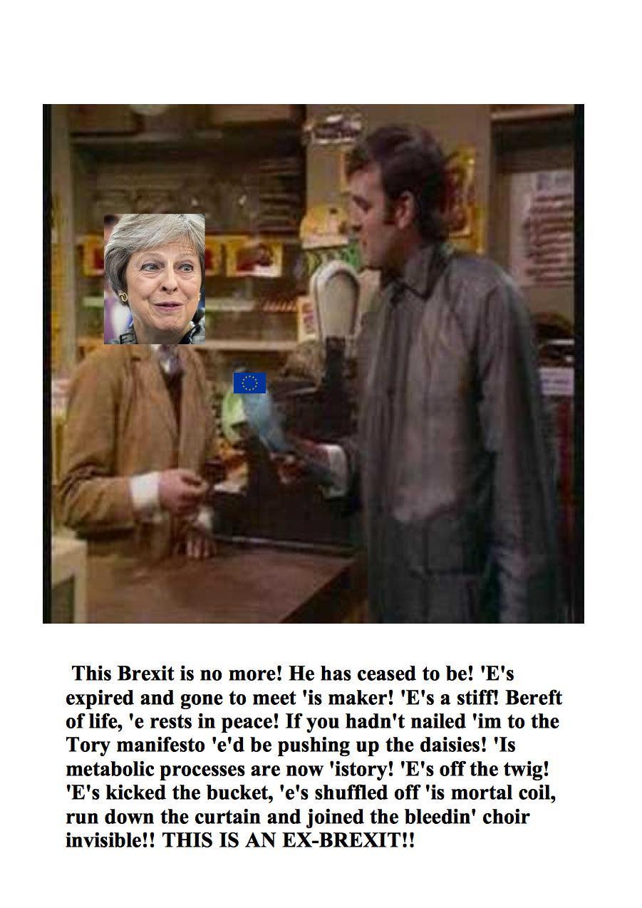 ex brexit picture2