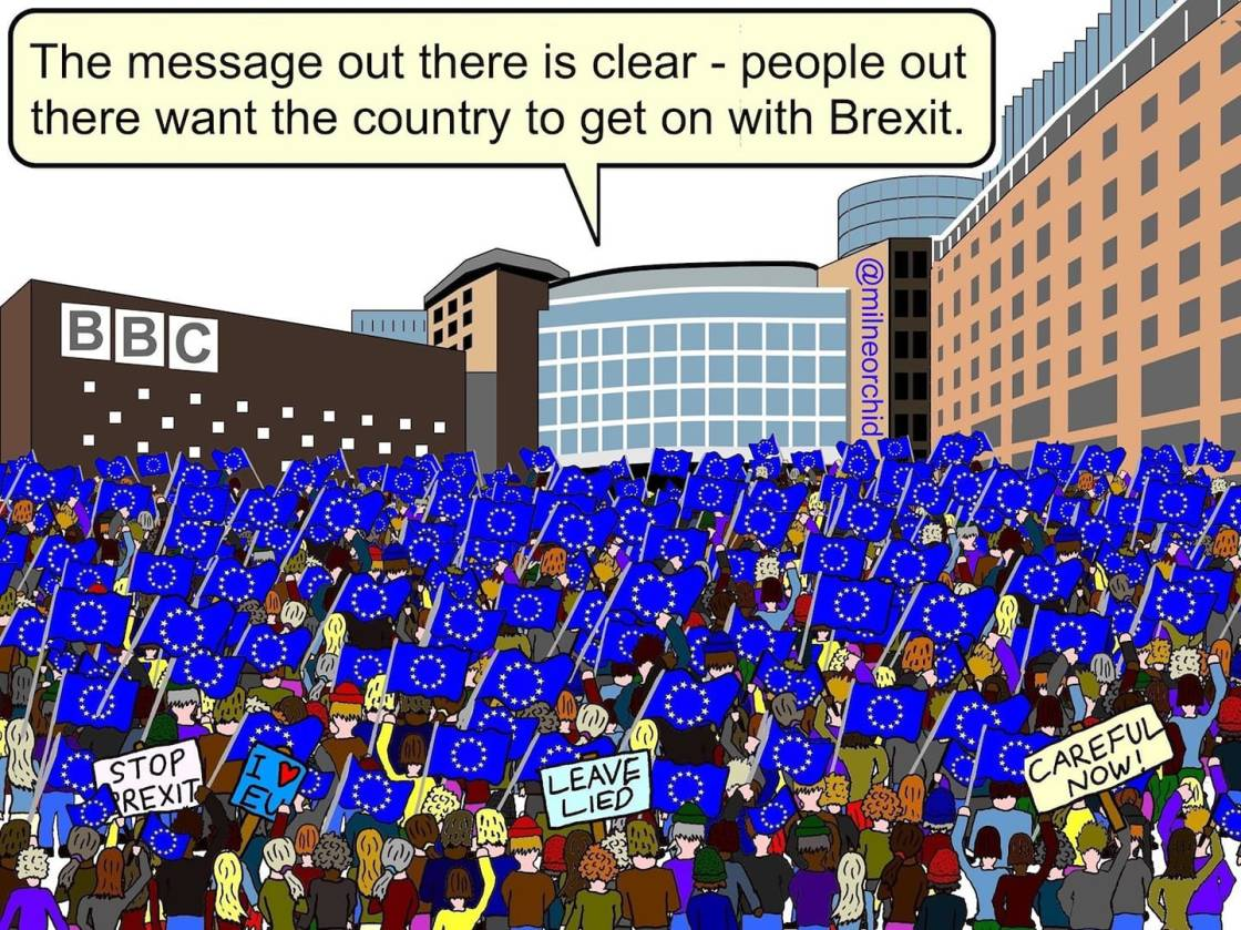 bbc brexit cartoon
